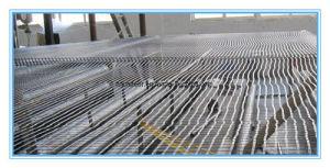 Bitumen Coated Fiberglass Geogrid 50/50kn/M for Asphalt Reinforcement pictures & photos