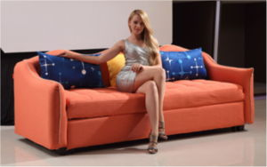 Hotel Sofa Bed Fabric Sofa Bed (FEC906) pictures & photos