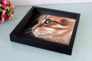 Multiple Opening Mat Plastic Photo Frame for Home Decoration pictures & photos