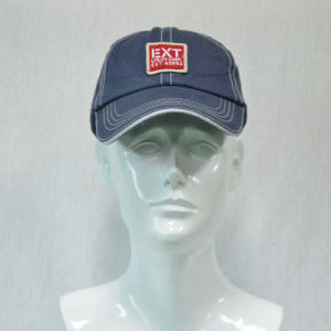 Blue Cotton Baseball Cap with 3D Embroidered pictures & photos