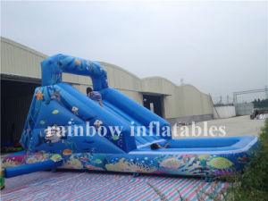 Durable Best Quality Inflatable Water Slide for Kids and Adults for Sale pictures & photos