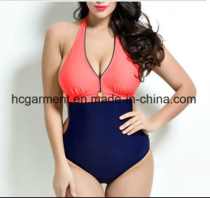 Big Size Swimming Wear for Lady, One Piece Swimming Suit pictures & photos
