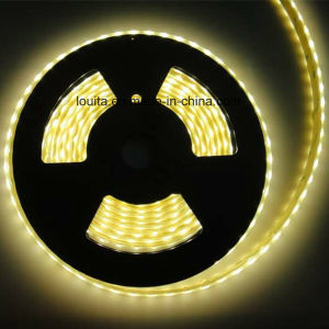 DC 12V 24V SMD5050 RGBW Flexible LED Strip pictures & photos