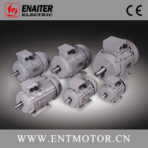 Ie2 High Efficiency 3-Phase Electrical Motor pictures & photos