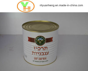 Canned Tomato Paste Manufacturer Wholesale OEM ISO Halal Food pictures & photos
