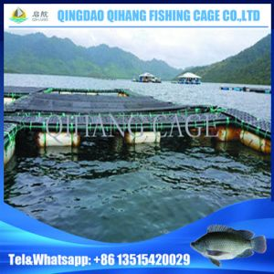 Freshwater Floating Fish Trap Cage pictures & photos