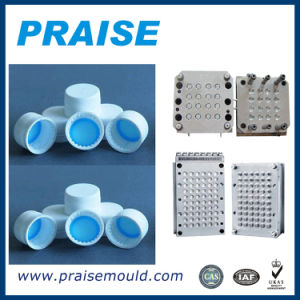 Hot Sale Quality Products 48 Cavities Plastic Bottle Cap Mould pictures & photos