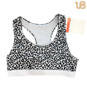 Hot Sports Bra Underwear for Girls pictures & photos