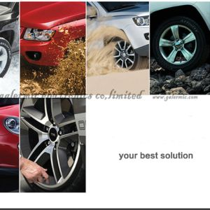 Internal Sensor TPMS for Car by Solar Energy pictures & photos