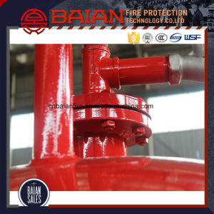 Vertical Installation Foam Bladder Tank for Foam System pictures & photos