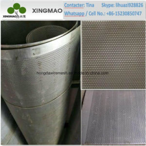 China Anping Factory of SUS304/SUS316 Perforated Metal Sheet (XM-D23) pictures & photos