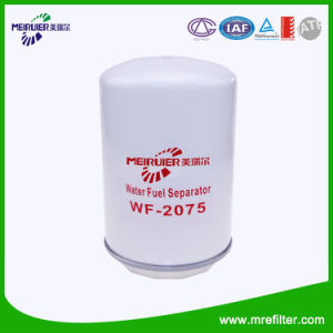 Water Cooling Filter Wf-2075 for Iveco pictures & photos