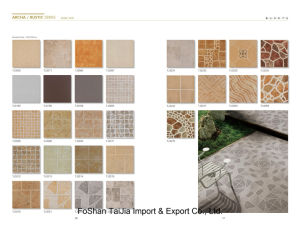 Building Material 300X300mm Rustic Porcelain Tile (TJ3263) pictures & photos