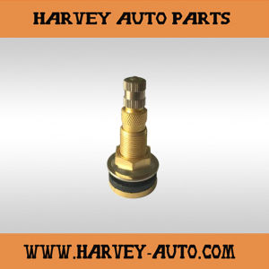 Hv-TV13 Tire Valve/Tyer Valve for Truck or Bus (TR618) pictures & photos
