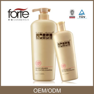 Ginger Wellness Oil Control Anti Greasy Shampoo