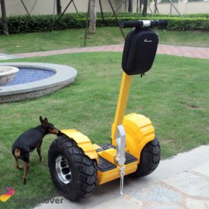 V6 off Road Self Balancing Electric Scooter Powerful China 50cc Scooter pictures & photos
