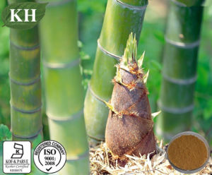 100% Natural Bamboo Shoot Extract 10: 1 pictures & photos