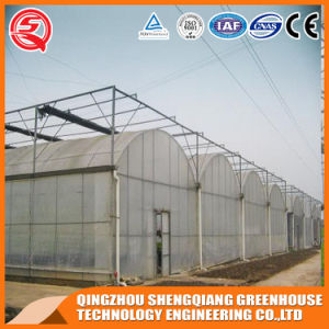 Agriculture Plastic Film Greenhouse for Vegetables/Flowers/Garden pictures & photos