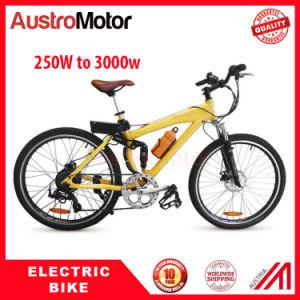 500W 1000W 3000W 6000W Fat Bike Ebike Wheelset Electric Fatbike Wheelset pictures & photos