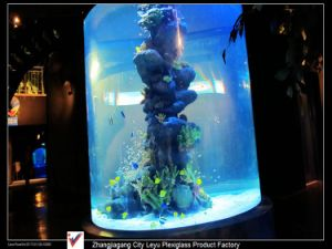 Giant Various Cylindrial Acrylic Fish Tank pictures & photos