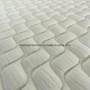 Round Health Soft Foam Mattress pictures & photos