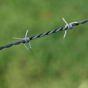 Galvanized Barbed Wire From China pictures & photos