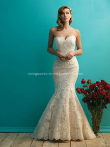Lace on Tulle Mermaid Wedding Bridal Dresses pictures & photos