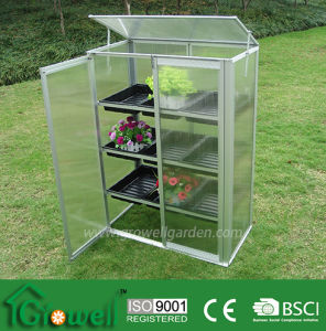 Ls Series Greenhouse (LS213) pictures & photos