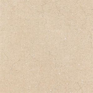 Glazed Rustic Floor Tile 600*600mm (RL6931)