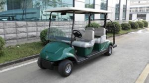 Environmental-Friendly 48V Electric Golf Buggy with EEC Approved pictures & photos
