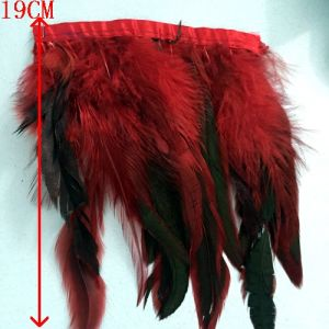 Feather Fringe pictures & photos