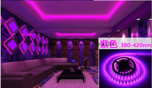 14.4W Ce and Rhos 60SMD3014 Purple LED Strip pictures & photos