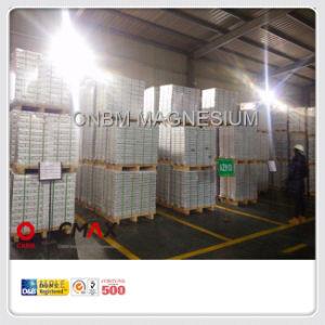 Magnesium Alloy Ingots to Krean Market