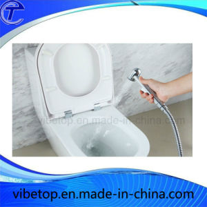 Bathroom Metal Shower Head/Bidet Set pictures & photos
