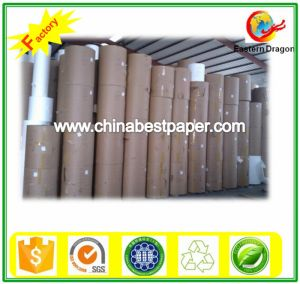 Roll Copy Paper (DIA 1200mm) pictures & photos