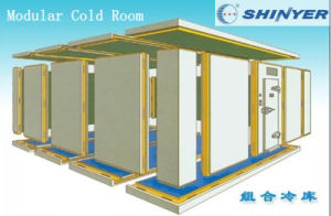 Cold Room Panel for Modular Cold Room pictures & photos