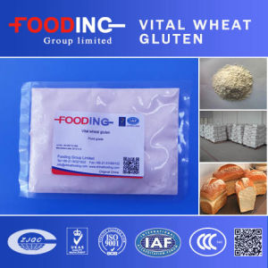 High Protein Light Yellow Powder Food Grade Vital Wheat Gluten pictures & photos