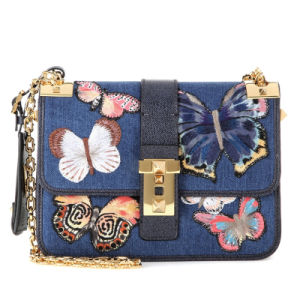 Trendy butterfly cross body chain lady Jeans handbag(JD-1C) pictures & photos