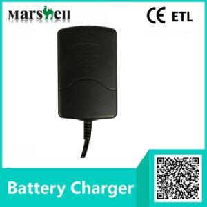 ETL Approve Multi-Stage Charging 6V / 12V Output Battery Charger (LC-2520) pictures & photos