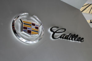 Car Brand Badge and Logo Sign/Car Logo with Name pictures & photos