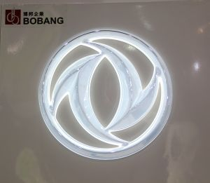 Luminous ABS Chrome Round Car Logo Sign pictures & photos