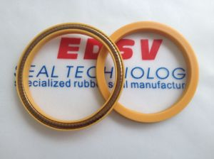 Spring Energized Seal pictures & photos