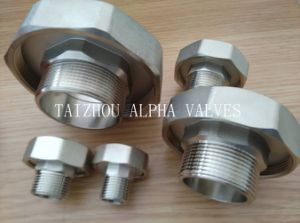 Brass Union Male Fitting with Rubber Tube (a. 7041) pictures & photos