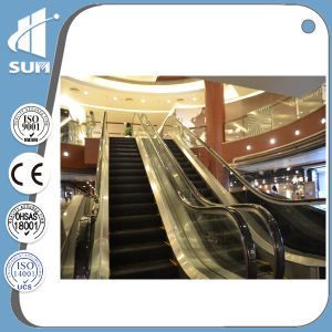 Indoor Escalator with 600mm/800mm/1000mm of Speed 0.5m/S pictures & photos