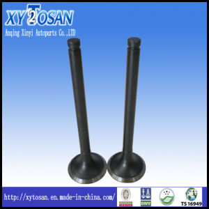 Engine Valve for Nissan Tb42/ Tb48/ Ne6/ Td25/ Ld20/ Qd32 (ALL MODELS) pictures & photos