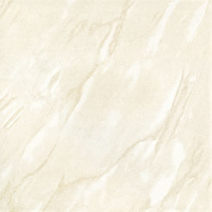 600X600 Soluble Salt Stone Porcelain Polished Tile (6S053) pictures & photos