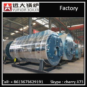 Gas Oil Fired Thermal Oil Boiler/Heater pictures & photos