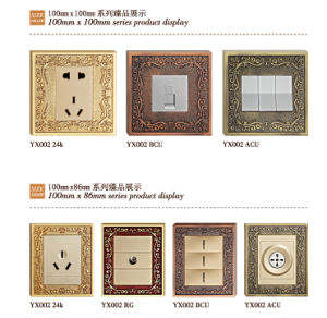 Brass Faceplate Wall Power Socket pictures & photos