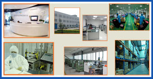 Fully Stainless Steel Wing Barrier / Flap Barrier /Turnstile Supplier pictures & photos