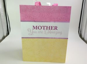 Mother′s Day Festival Gift Packaging Bags/ Paper Bags